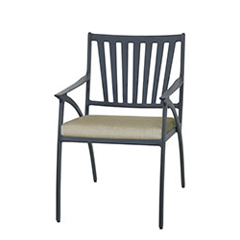 Amari Cushion Dining Chair